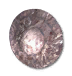 Shield small icon.png