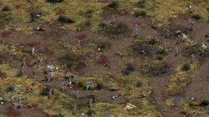 Battle of Yenwood Field.png