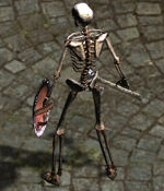 Humansekeleton.jpg