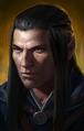 Elf male PoE1 portrait 2 lg.png