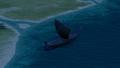 Ship wm longship night.png