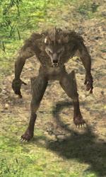 Wolf-icon.jpg