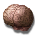 Vithrack brain icon.png
