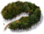 Icon Forest Dark.png