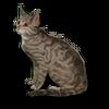 Poe2 pet backer cat Pozzi icon.png