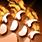 Wildstrike burn icon.png