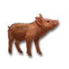 Poe2 pet backer pig Chauncy icon.png