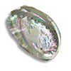 Poe2 mother of pearl icon.png