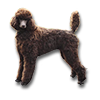 Poe2 pet backer dog Xopn'aua icon.png