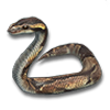 Snakelet icon.png