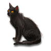 Poe2 pet backer cat Zorro icon.png