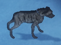 Warpup-appearance2-small.png
