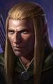 Elf male PoE1 portrait 1 lg.png