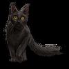 Poe2 pet backer cat Prissy icon.png
