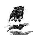 Bestiary war dog.png