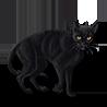 Pet black cat icon.png