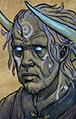 Portrait Druid of Winter Convo.png