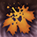 Autumns decay icon.png