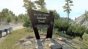 Weaverville Shasta-Trinity National Forest.jpg