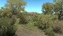 AZ Kanab Creek.png
