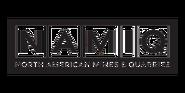 NAMIQ Logo