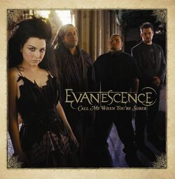 Evanescence - Call Me When Your Sober.jpg