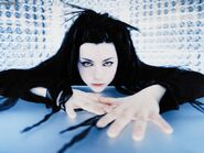 New-Hair-Style-Of-Amy-Lee