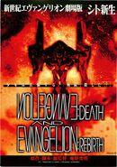 Evangelion Death and Rebirth Flier 1