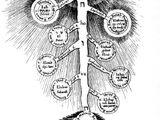 Teorie e analisi: Angeli e Cabala