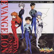 Evangelion plugsuit cover