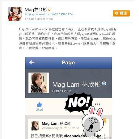 Magfakefbpage.JPG