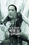Victor mk