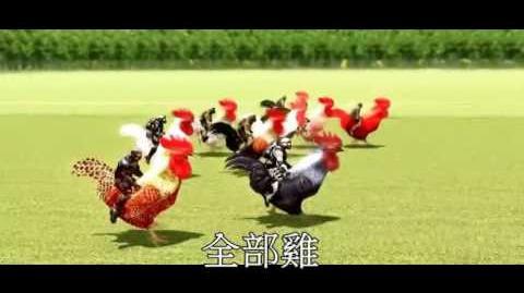 賽雞。序曲 (雞 全部都係雞)