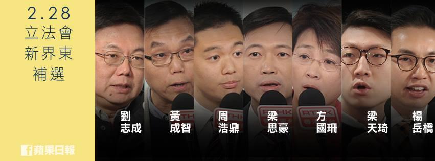 2016年立法會新界東補選