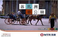 MTR Horse