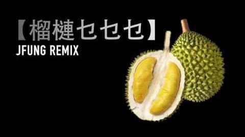 【 榴槤乜乜乜-JFung Remix 】Official MV