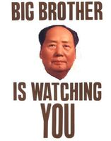 Big-Brother-is-Watching-You-Posters0