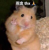 2盒 thx(倉鼠2)