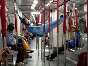 750px-mtr-hammock