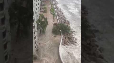 打風系列:十號風球下 杏花邨海水倒灌 巨浪有幾層樓高