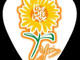 高登YUI Fans Club