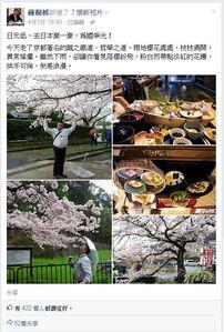Treerootjapaneatsakura1