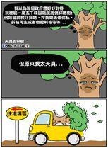 Mung chu tree to landfill