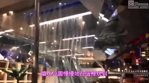 【膠登音樂台】《水舞天下》(原曲:《信者得愛》,鄭秀文)