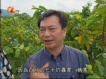 Liu 70% of germs