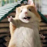 2盒 thx(倉鼠1)