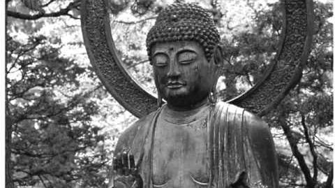 高登音樂台 Buddha California 迷幻Autotune版