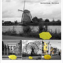 Yellowumbrutravelworld2.JPG