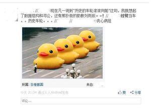June4 duck