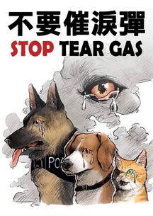 8月30日「香港動物醫護界向催淚彈說不」集會文宣